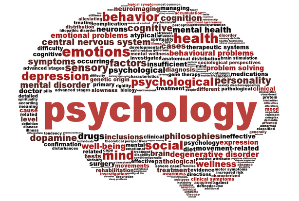 marc lepine psychology perspective